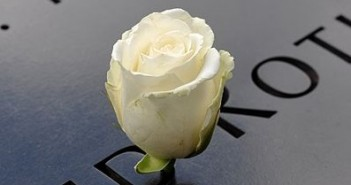 White Rose 9-11 memorial